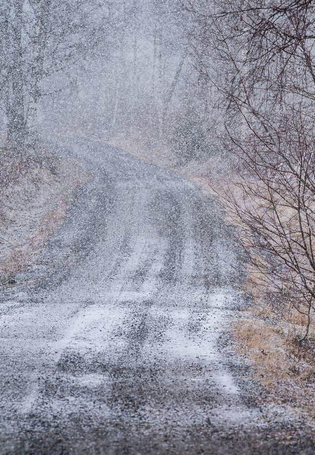 降雪在乡下 库存图片