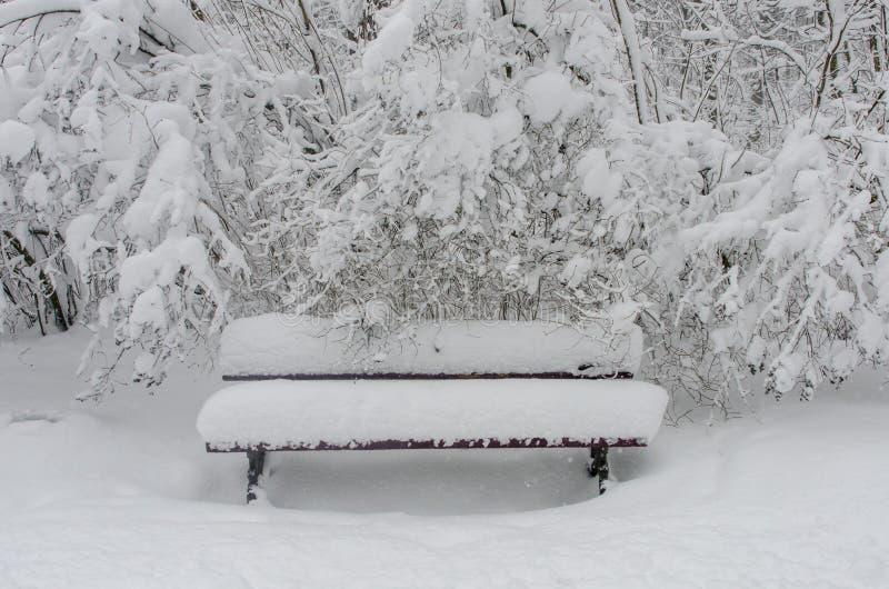 降雪在公园 免版税图库摄影