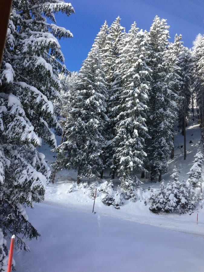 降雪在奥地利 免版税图库摄影