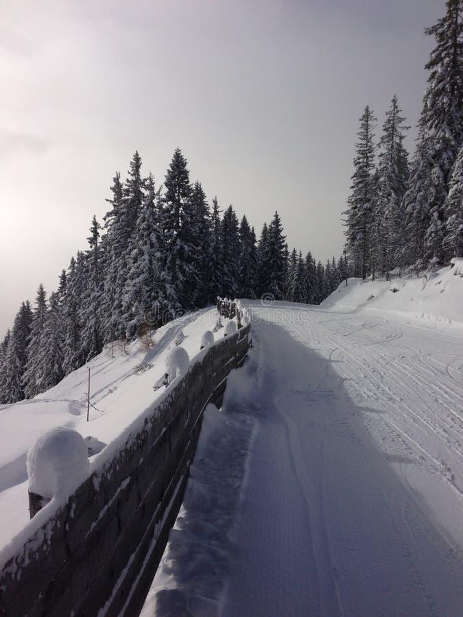 降雪, Der Dachstein地区ustria, Ramsau skilslope 库存图片