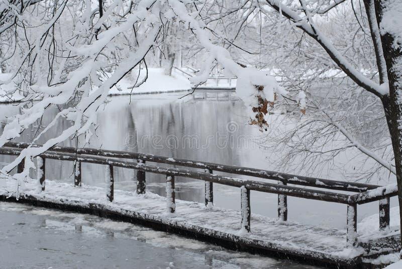 降雪 库存图片