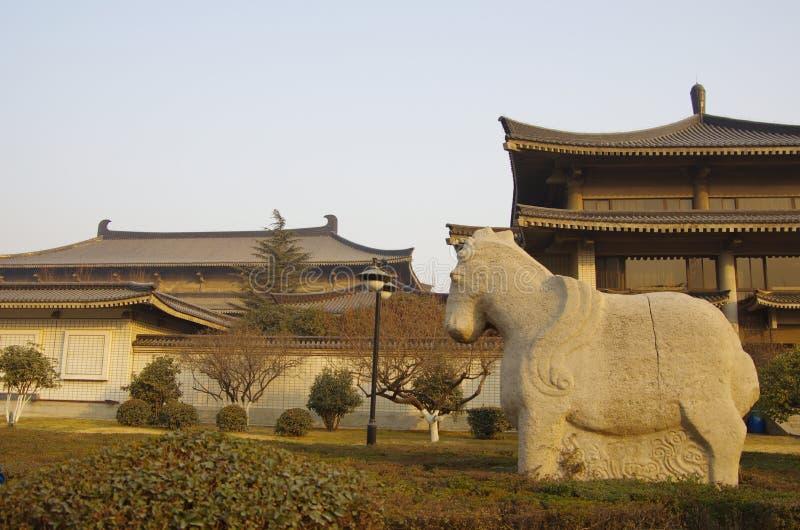 陕西历史博物馆 免版税库存图片