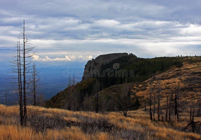 陡峭的山峰和一个被烧的森林的美丽的景色 图库摄影