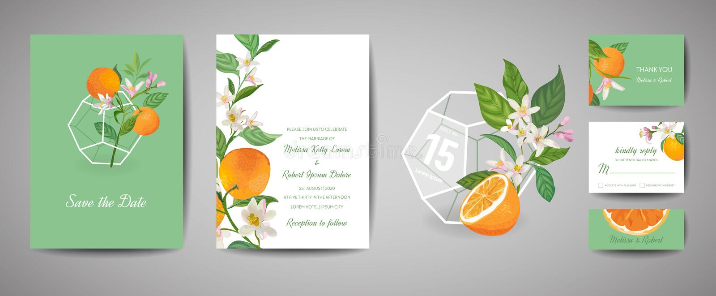 除日期外,设置植物的减速火箭的婚姻的请帖、葡萄酒,橙色果子模板设计和叶子,柑橘开花 库存例证