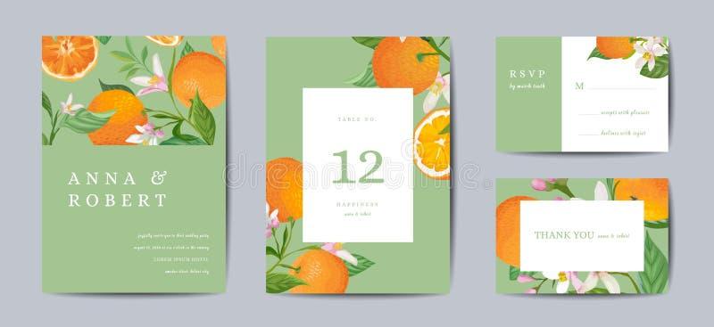 除日期外,设置植物的减速火箭的婚姻的请帖、葡萄酒,橙色果子模板设计和叶子,柑橘开花 皇族释放例证