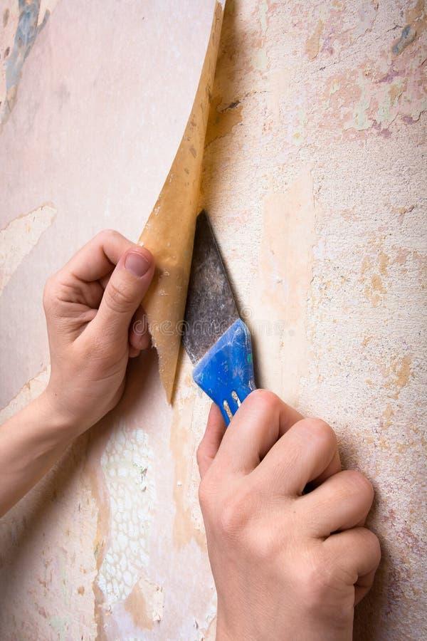 去除老墙纸的手从墙壁 库存照片