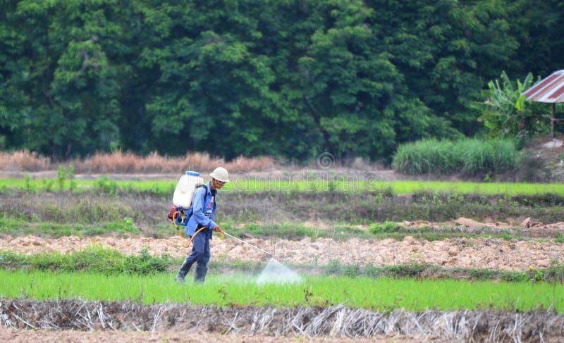 除草药喷洒农夫领域 免版税库存图片