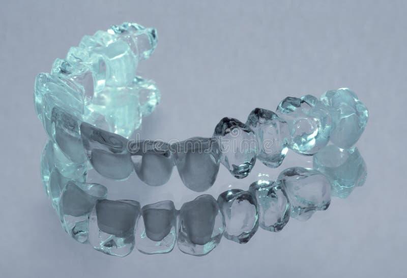 陶瓷锆 牙 牙科技师 库存照片