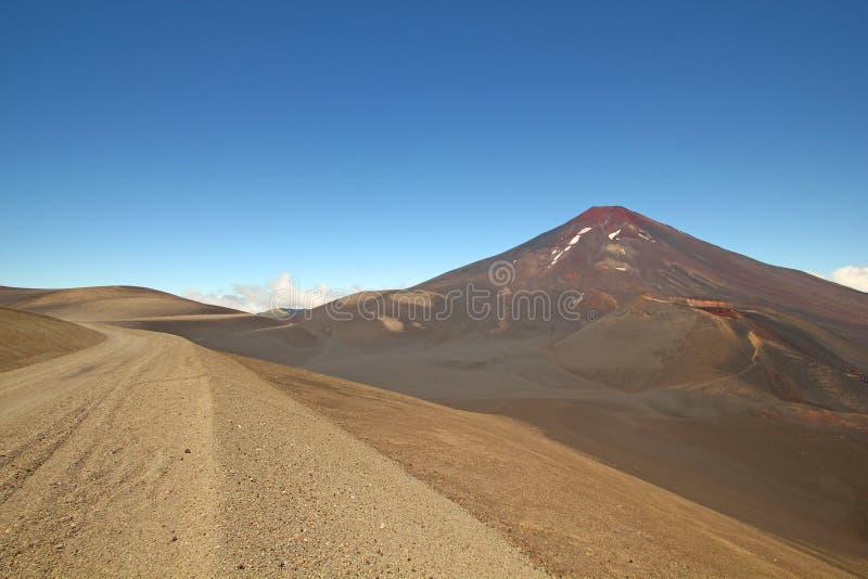 隆基迈火山和tolhuaca火山,智利 免版税图库摄影