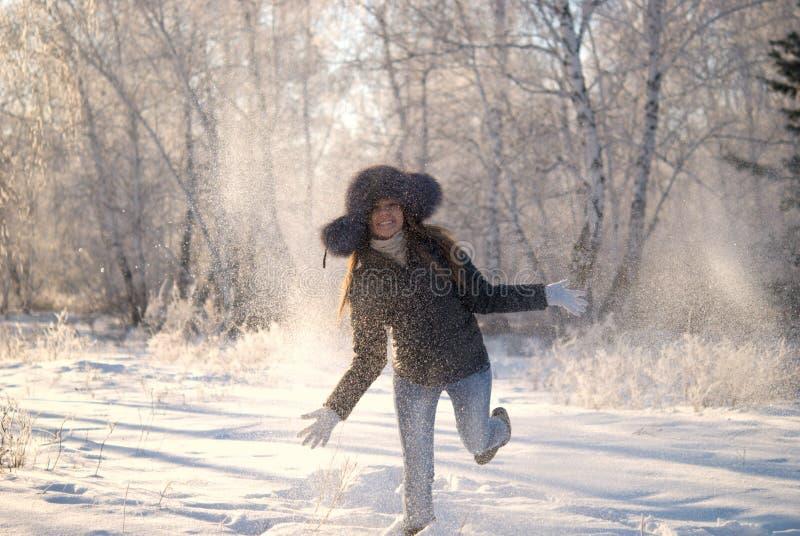 随风飘飞的雪 免版税库存照片