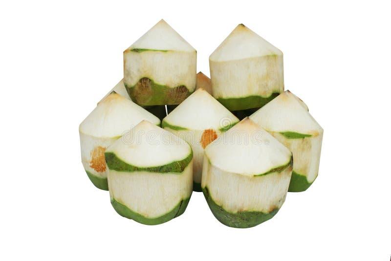 隔绝了在白色背景的新鲜的椰子 免版税库存照片