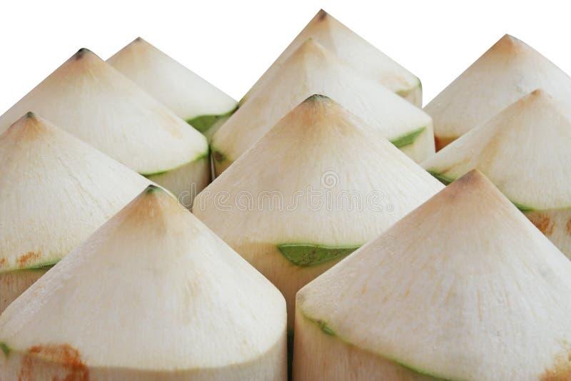 隔绝了在白色背景的新鲜的椰子 免版税图库摄影
