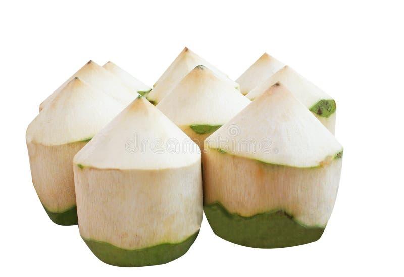 隔绝了在白色背景的新鲜的椰子 免版税库存图片