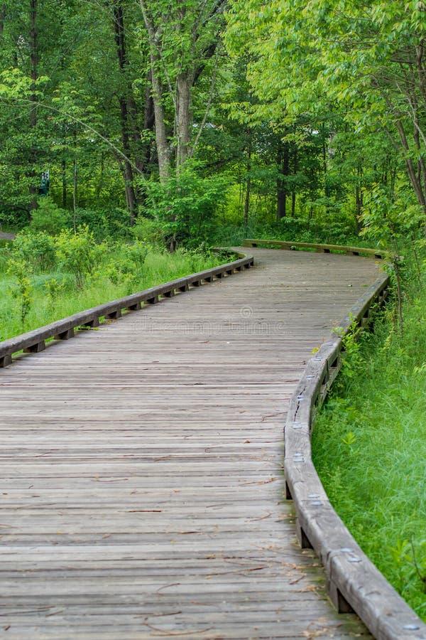 障碍容易接近的木板走道 免版税图库摄影