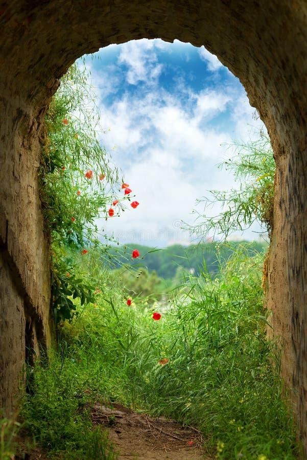 隧道的末端 库存图片