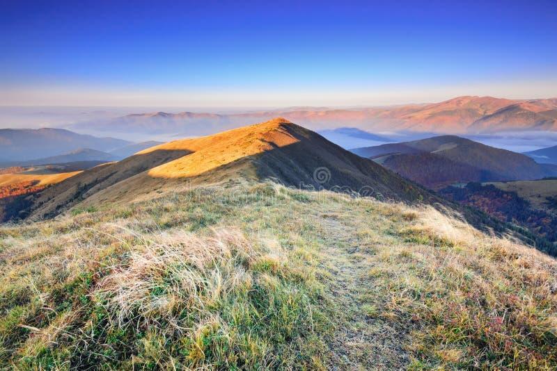 难以置信地有薄雾的秋天黎明的美好的早晨在山的II 免版税图库摄影