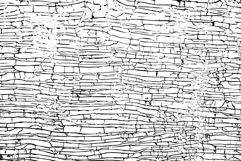 难看的东西干油漆涂层纹理 边界月桂树离开橡木丝带模板向量 皇族释放例证
