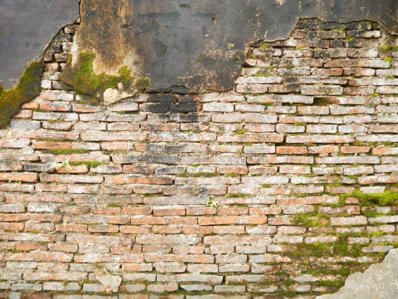 难看的东西砖砌与青苔的墙壁纹理回报 免版税库存图片