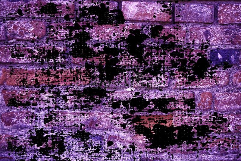 难看的东西肮脏的超紫色砖墙纹理、水泥背景网站的或移动设备 免版税库存图片