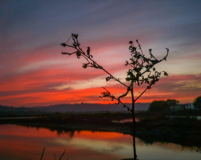 雄伟红色日落 在天空的火 库存图片