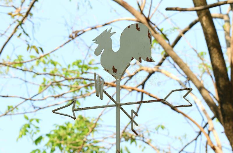 雄鸡公鸡塑造了风向反对树枝和蓝天 免版税库存照片