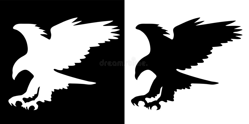 雄鹰飞行掠影展翅翼展黑白分明矢量图 免版税库存照片