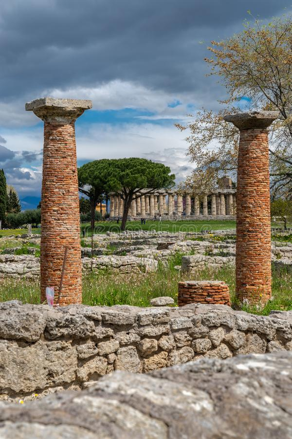 雅典娜寺庙在帕埃斯图姆,意大利 免版税库存图片