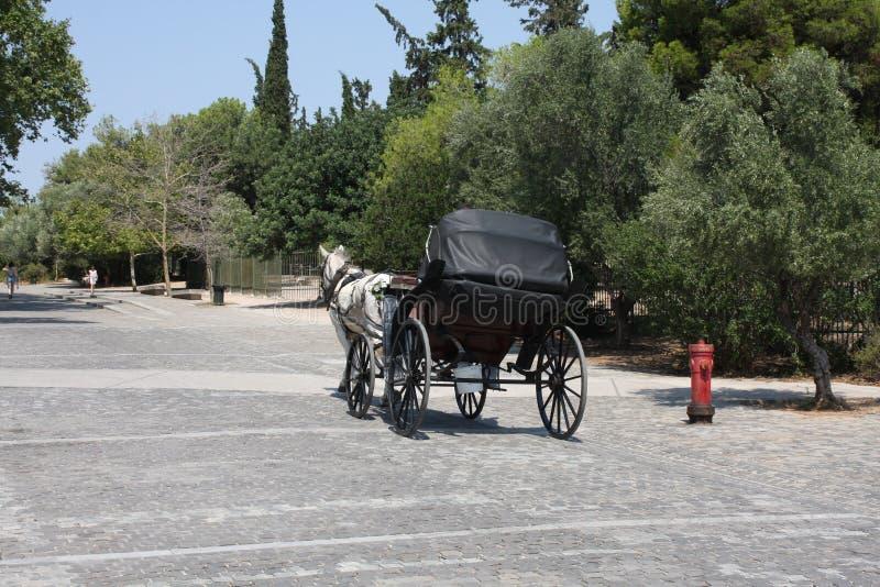 雅典马乘驾在城市 库存照片