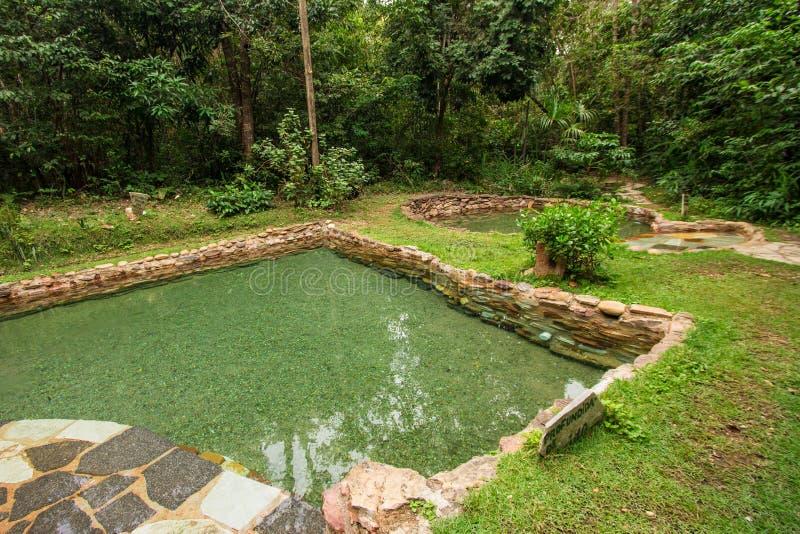 雅尔丁做伊甸园自然水池水 免版税库存照片