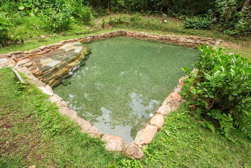 雅尔丁做伊甸园自然水池水 库存图片