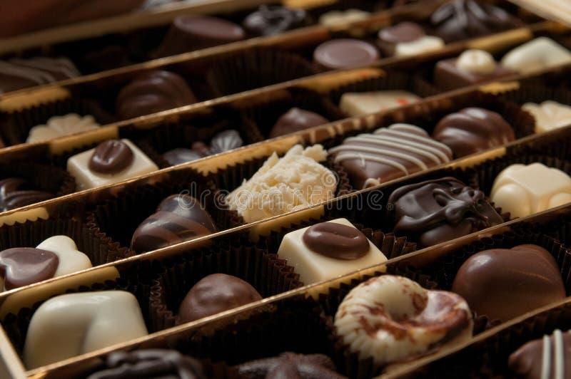 集中于一箱豪华比利时果仁糖巧克力 免版税库存照片