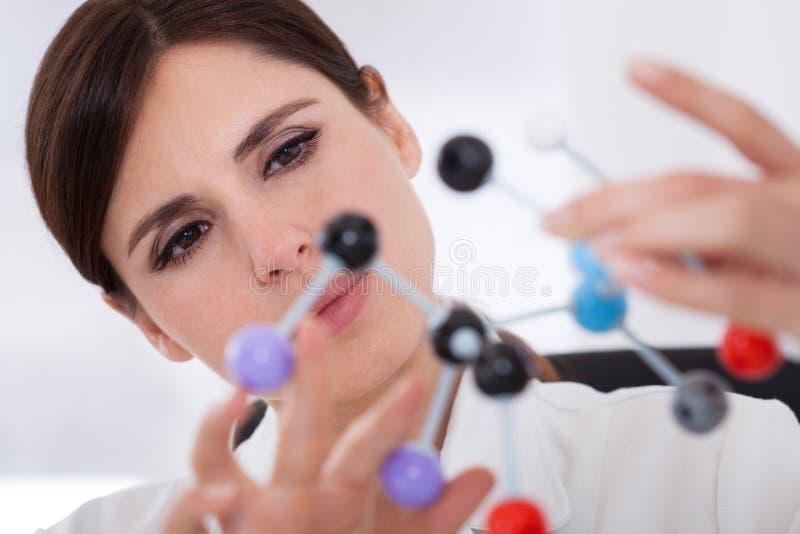 看分子结构的科学家 免版税库存图片