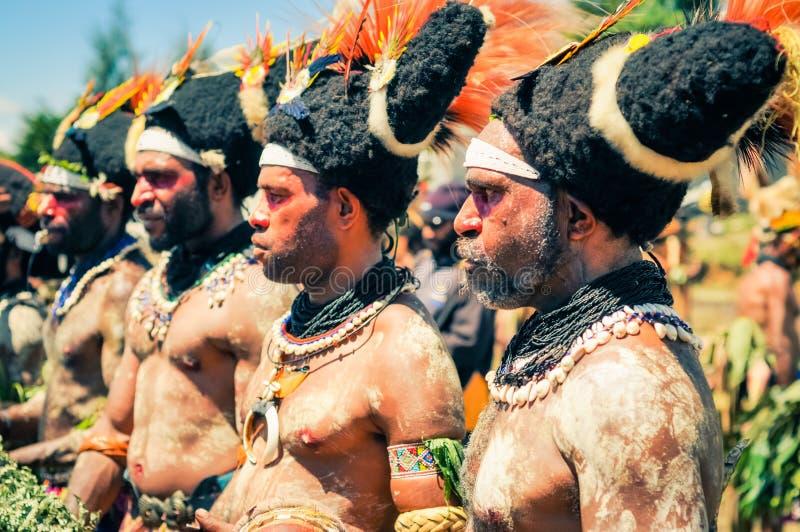 集中在巴布亚新几内亚 免版税库存照片