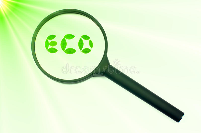 集中eco重点绿色扩大化的符号 库存图片