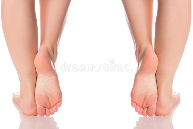 集合女性脚脚腿脚跟从另外方向医学秀丽健康的 库存图片