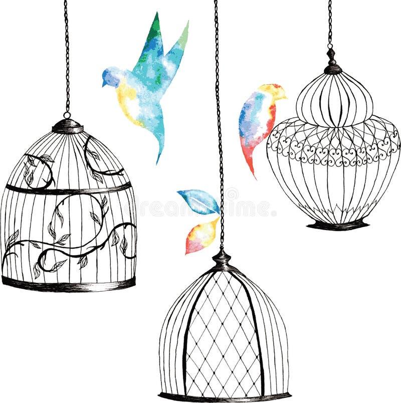集合手画鸟笼,鸟,叶子,水彩彩虹 皇族释放例证