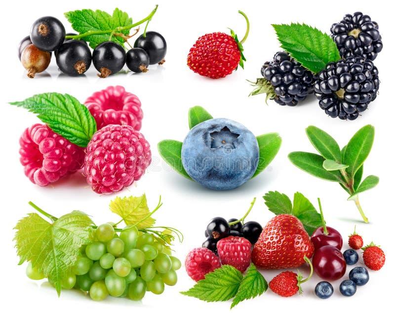 集合新鲜的莓果健康食物果子 库存图片