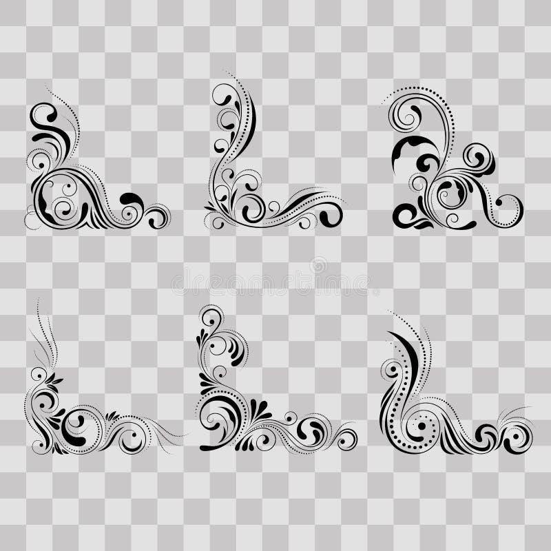 集合花卉壁角设计 在透明背景的漩涡装饰品-导航例证 与曲线的装饰边界 向量例证