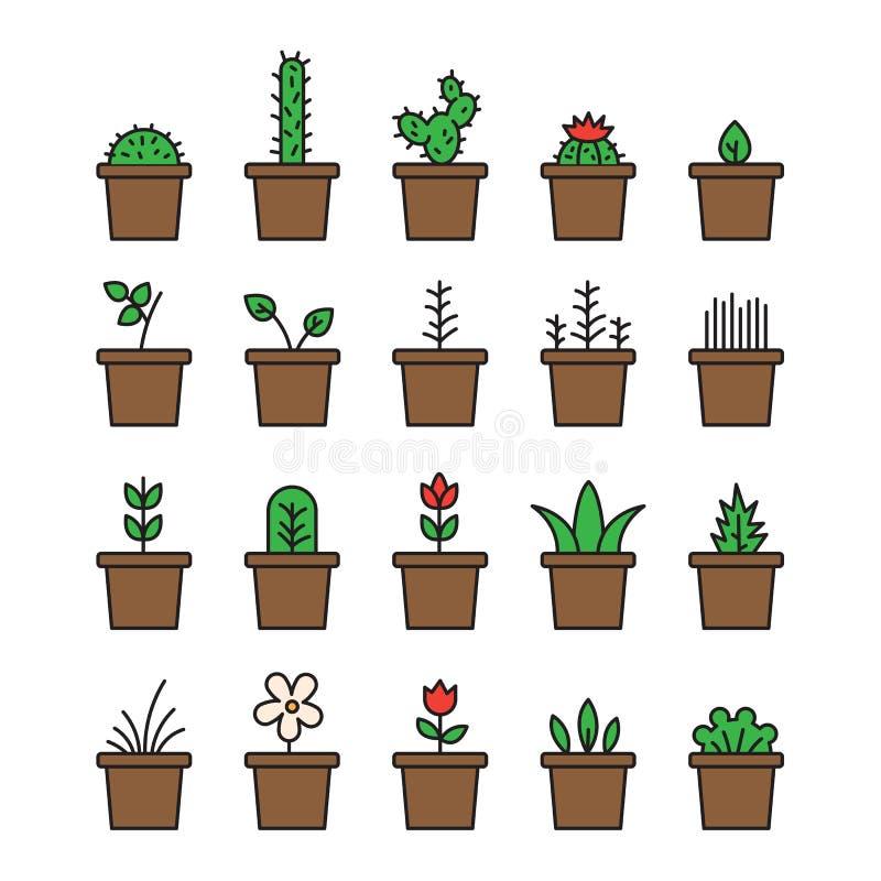 集合花卉植物和开花的仙人掌在被隔绝的罐 库存例证