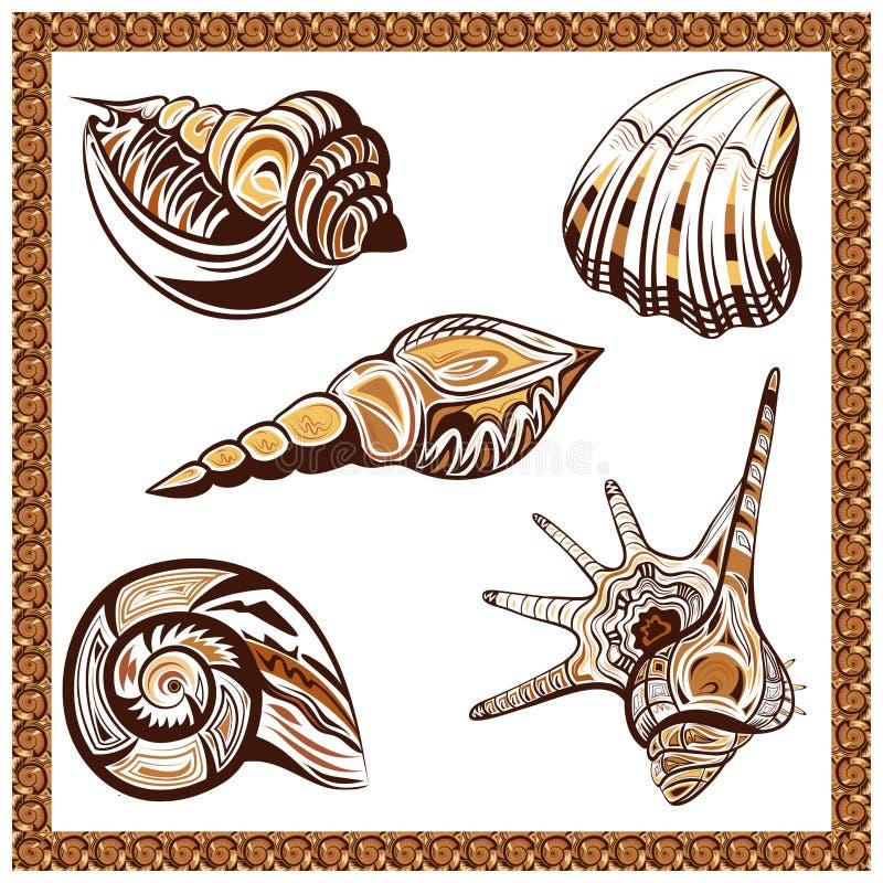 集合装饰装饰种族在a的贝壳 皇族释放例证