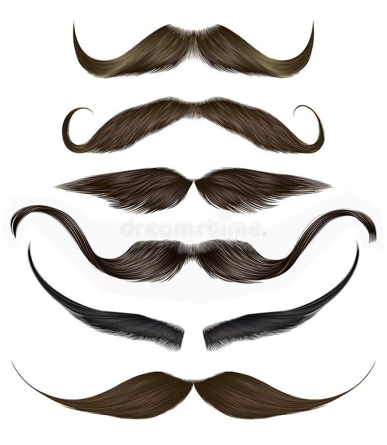集合长的卷曲胡子和髭不同的颜色 秀丽样式 现实3d 皇族释放例证