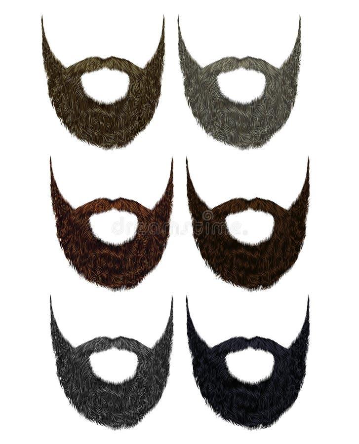 集合长的胡子和髭不同的颜色 时尚秀丽样式 库存例证