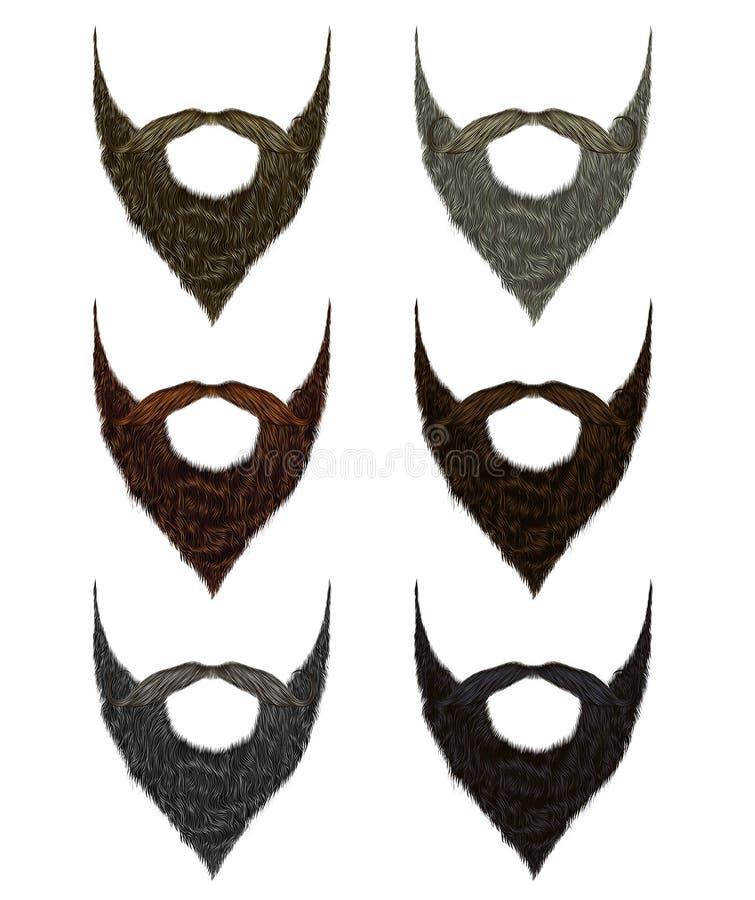 集合长的胡子和髭不同的颜色 时尚秀丽猪圈 库存例证