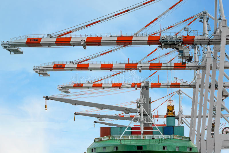集装箱船在终端与岸起重机一起使用在船坞 免版税库存图片