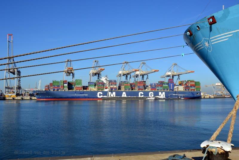 集装箱船CMA CGM麦哲伦 免版税图库摄影