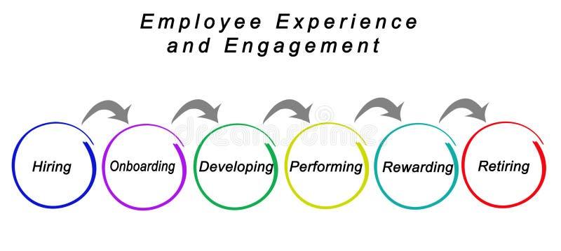 雇员经验和订婚 向量例证