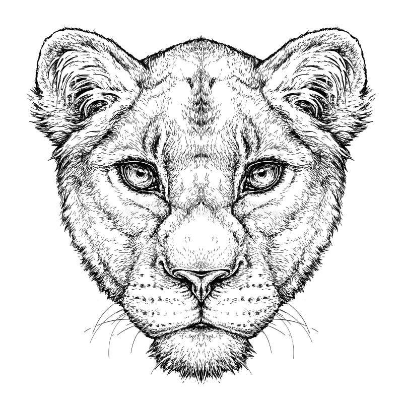 雌狮手拉的画象  蝴蝶 向量例证