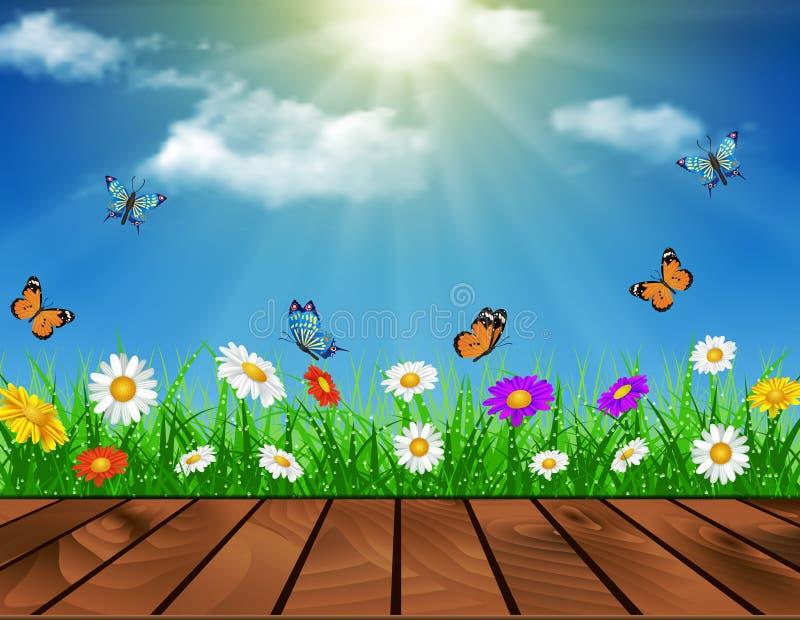 雏菊传染媒介背景夏天设计 皇族释放例证
