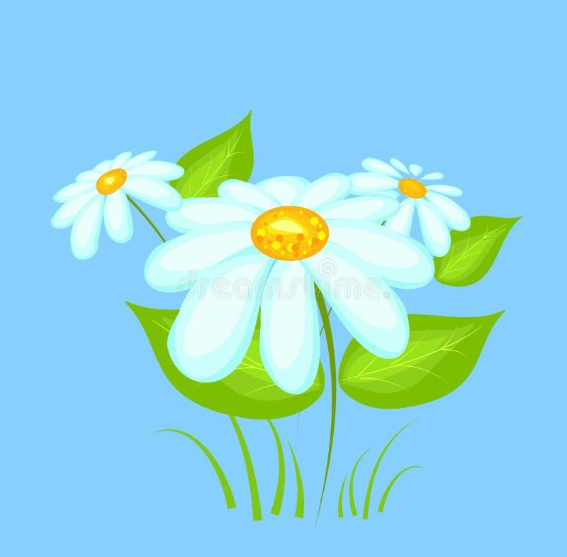 Download 雏菊开花传染媒介 向量例证. 插画 包括有 例证, 向量, 庭院, 开花, 背包, 蓝色, 平面, 植物群 - 72362335
