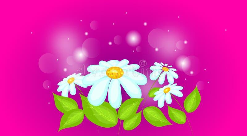 Download 雏菊有发光的背景 库存例证. 插画 包括有 抽象, 花卉, 亮光, 改良, 自然, 例证, beauvoir - 72362256
